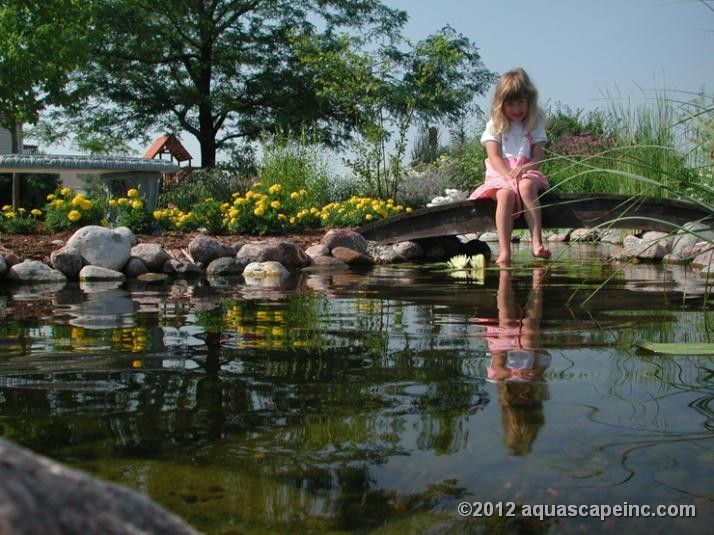 17 best ponds for kids images on pinterest water for Koi pond builders orlando fl