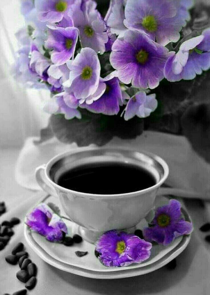 Открытки, открытка цветок и кофе