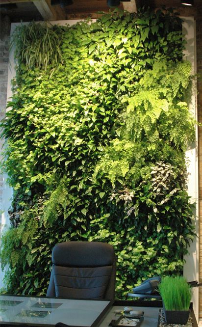 Vertical Green Interior Plantscaping