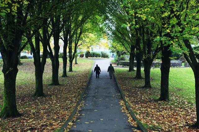Лимерик, Ирландия. Прогулка по улицам города  