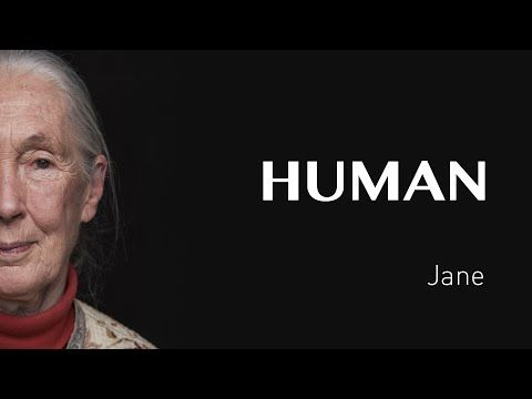 L'interview de Jane - FRANCE - #HUMAN - YouTube
