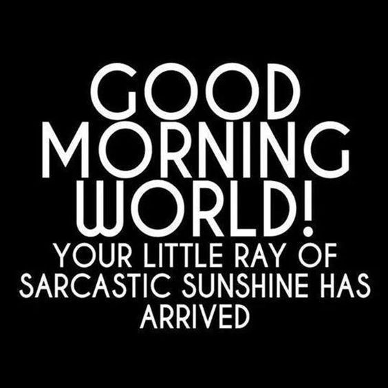 Good morning world, you're little ray of sarcastic sunshine has arrived
