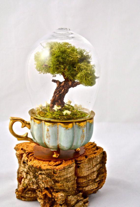 Tree terrarium, beautiful real moss terrarium- hand sculpted miniature tree handmade by uniqueleeart on Etsy, $55.00