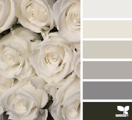 Inspirational image. NEUTRAL COLOURS. White, pearl, light greys and black tones.