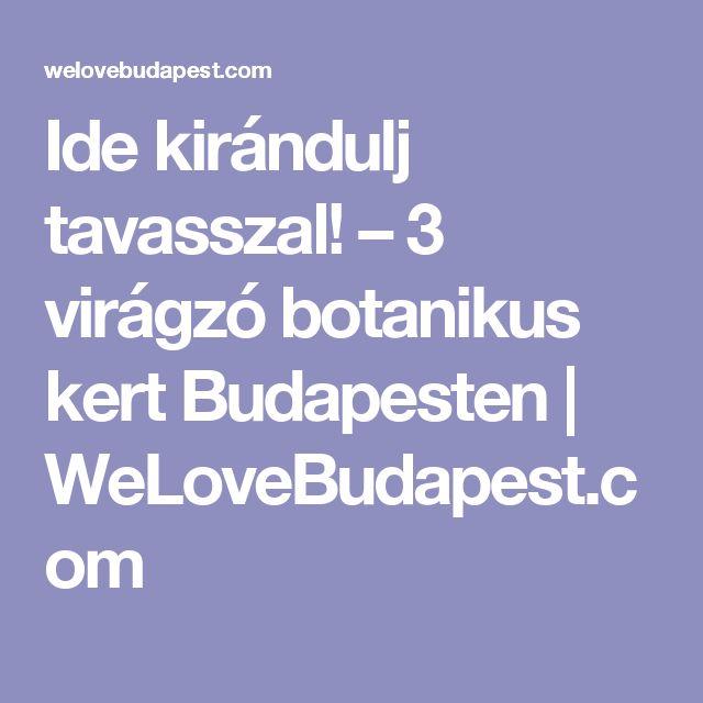 Ide kirándulj tavasszal! – 3 virágzó botanikus kert Budapesten | WeLoveBudapest.com