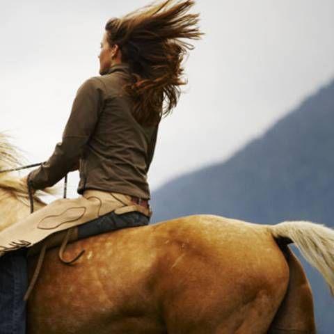 Pferdesport: Reiten lernen als Erwachsene - ein Selbstversuch   BRIGITTE.de