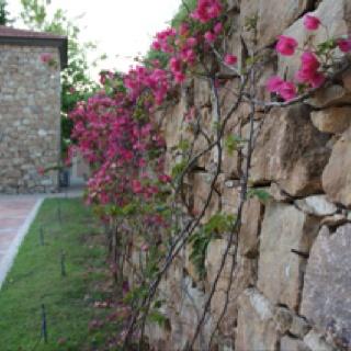 Beautiful Sani resort in Halkidiki, Greece