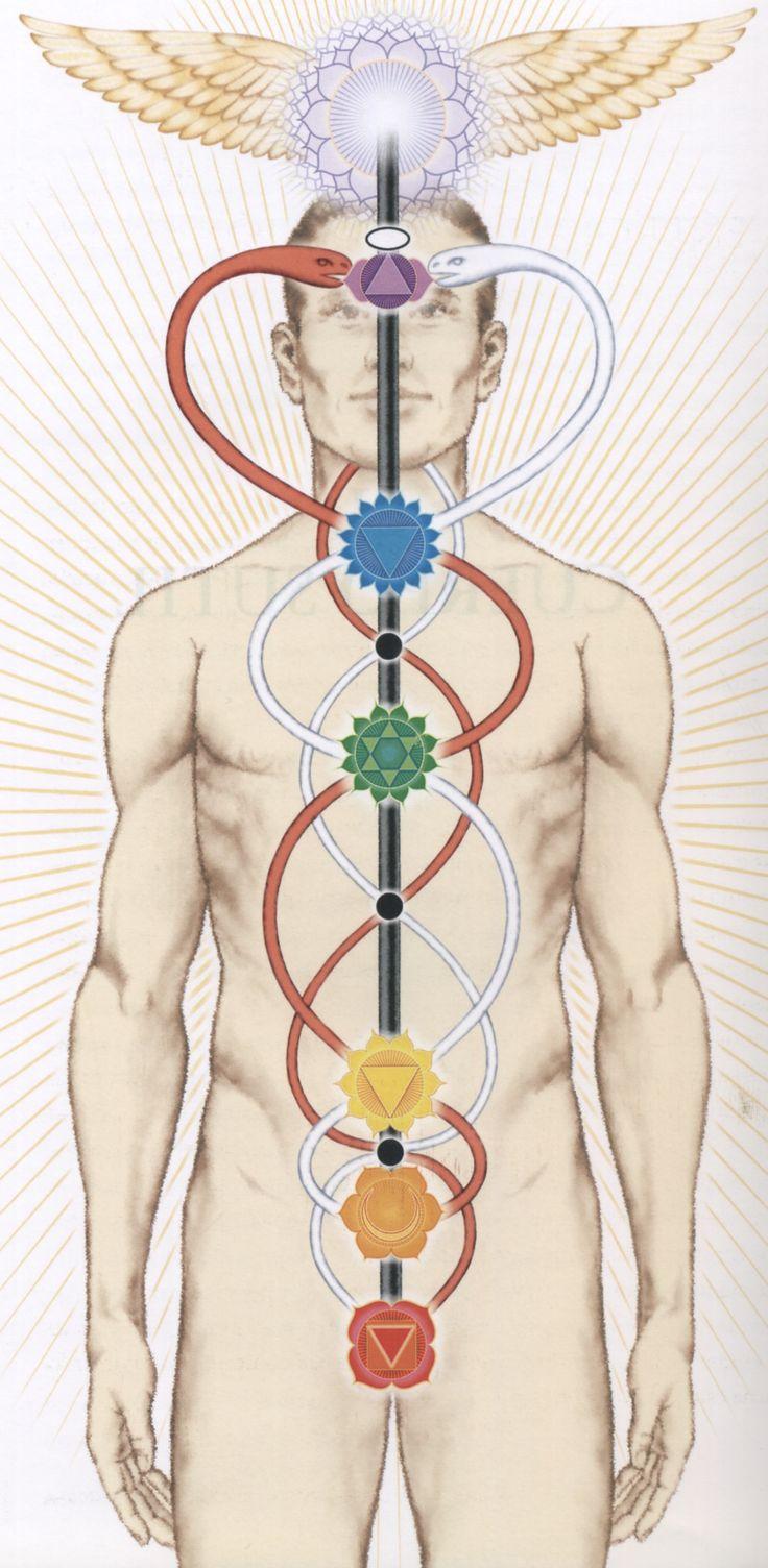 Zabieg 7 Element to połączenie aromaterapii ze starożytną metodą profilaktyki zdrowia