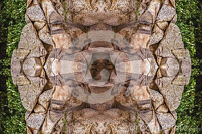 Abstract photo with theme derived from elephant body and its environment
