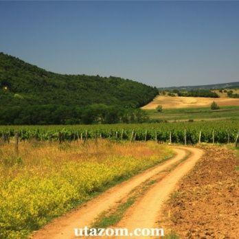 Magyarország legszebb tájai: Tihany - Messzi tájak Európa gyalogtúra   Utazom.com utazási iroda