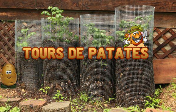 Les 127 meilleures images du tableau jardin facile sur for Rendement permaculture