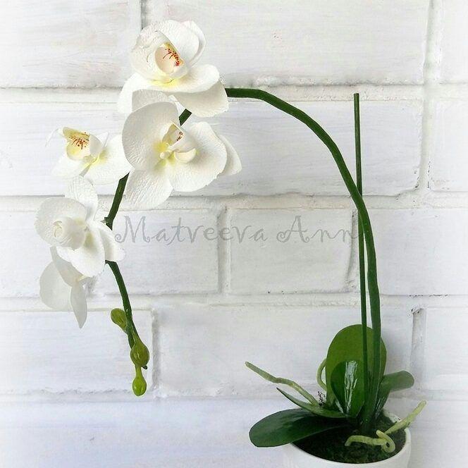Белая орхидея фалеопсис Фом иранский. Тонировка акрил и пастель. #фоамиран#фомфлористика#цветыизфоамирана#цветыручнойработы#фомбукет#орхидеяизфоамирана#фаленопсисфоамиран#foamiran#foamiranflowers#декор#интерьер