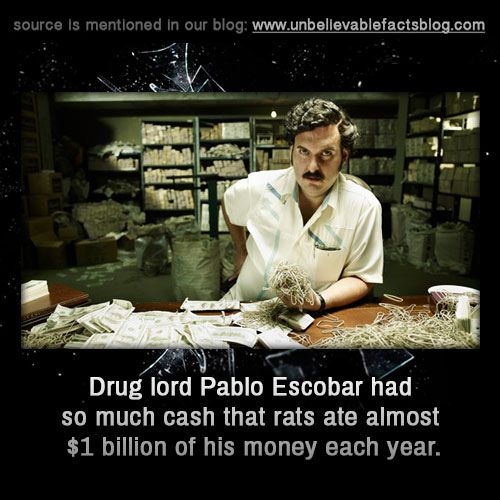 Drug lord Pablo Escobar had so much cash that rats ate almost $1 billion of his money each year.