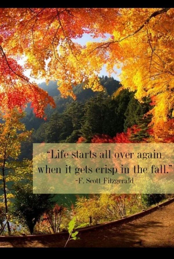 autumn,                                                       …