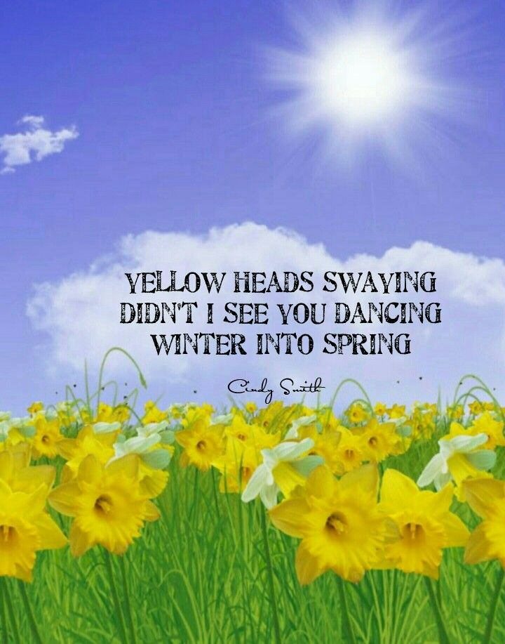 haiku poems about spring - photo #30