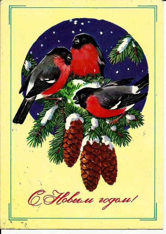 Bullfinch Birds Vintage Russian Postcard Happy by LucyMarket, $3.50