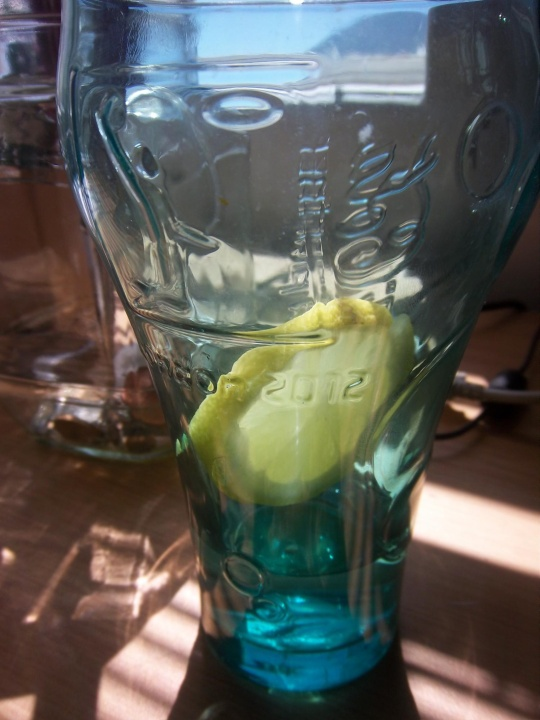 Lemon Water! Saves us all on Boiling Summer Days
