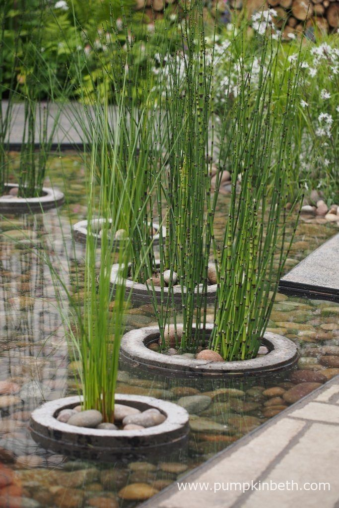 A closer look at the water feature in The Greening Grey Britain Garden, designed by Professor Nigel Dunnett, pictured at the RHS Chelsea Flower Show 2017.