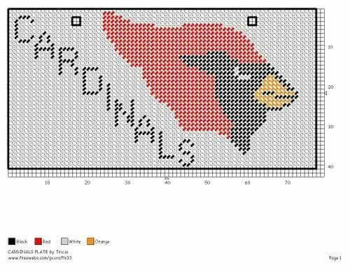 ARIZONA CARDINALS LICENSE PLATE by TRICIA -- FOOTBALL WALL HANGING