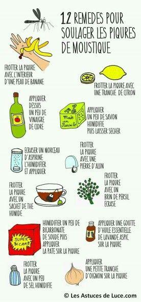 Astuces lutte moustiques