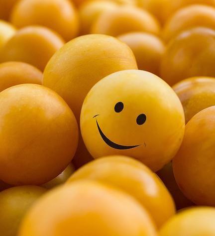 Aumentare il metabolismo con la frutta: ecco quale scegliere   Ambiente Bio