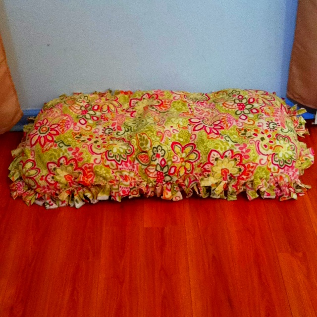 (just make a fleece tie blanket and add stuffing! I · No Sew ... & 186 best No Sew Blankets images on Pinterest | Fleece tie blankets ... pillowsntoast.com