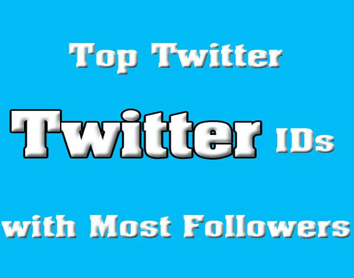 conwayharry: give you 56K Twitter IDs from Web Design, SEO, and Business niche for $5, on fiverr.com