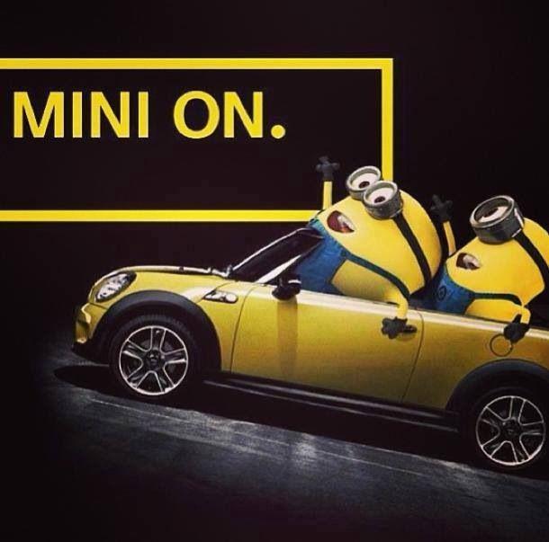 174 best images about Minions~Despicable Me on Pinterest ... | 610 x 603 jpeg 38kB
