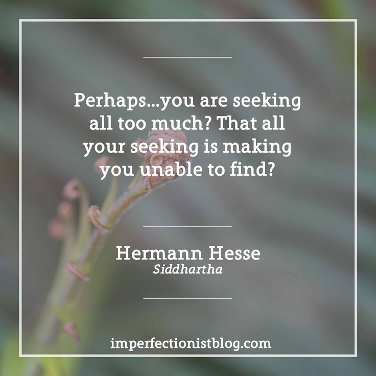 """Perhaps...you are seeking all too much? That all your seeking is making you unable to find?"" -Hermann Hesse (Siddhartha) #bookclub"