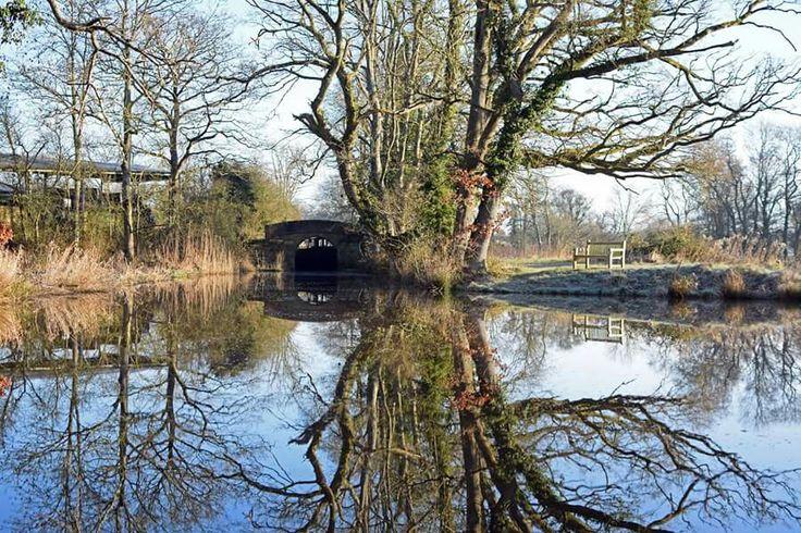 Beautiful walks along the Wey and Arun Canal