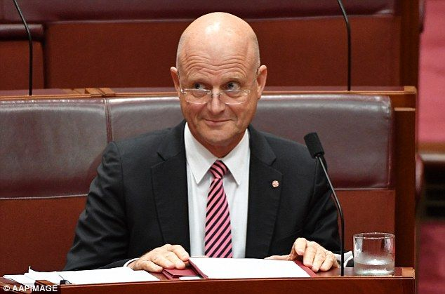 Liberal Democratic Senator David Leyonhjelm has questioned why he has not seen any positive news about U.S. President Donald Trump on SBS nightly news.  The Liberal Democrat asked why he has only seen negative stories on President Trump, starting from the results of the election to now, on SBS nightly news in a Senate hearing in Canberra on Tuesday.