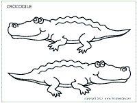 Krokodil, ook in gekleurde versie
