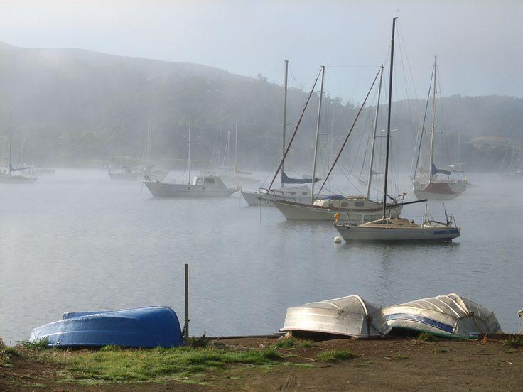 Misty Huon River nr Cygnet, Tasmania