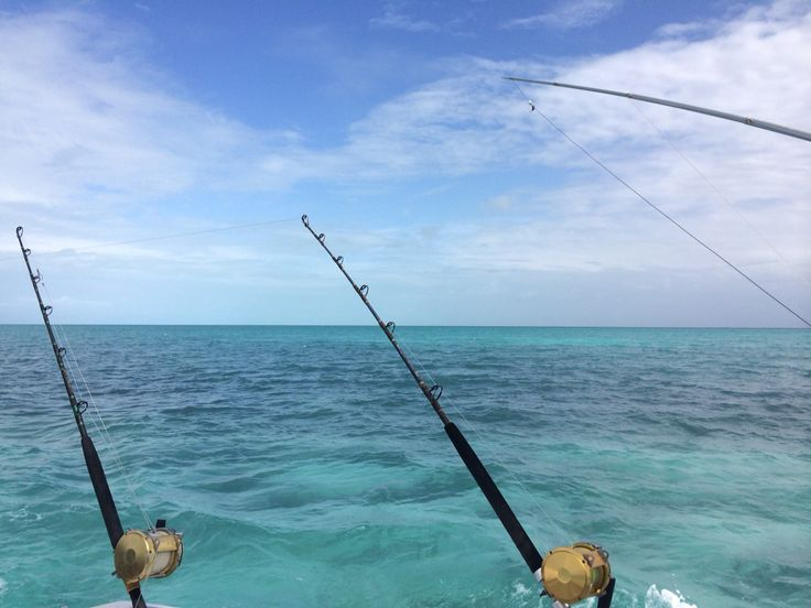 20 best belize tours roberts grove beach resort for Deep sea fishing belize