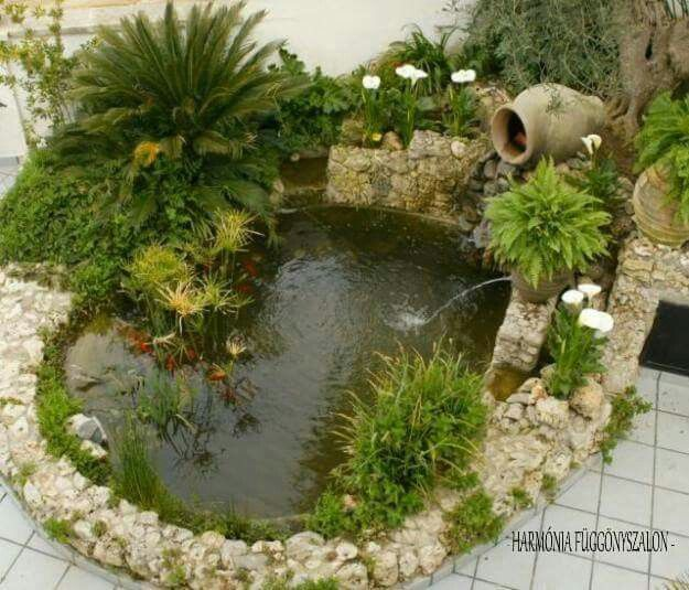 Las Mejores Fotos De Jardines En Pinterest: Mejores 17 Imágenes De Jardines De Casas Pequeñas En
