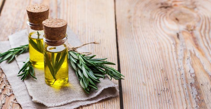 How to get rid of noseeums hunker essential oils