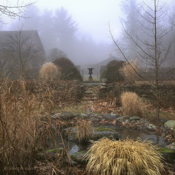 Fall and Winter Grasses