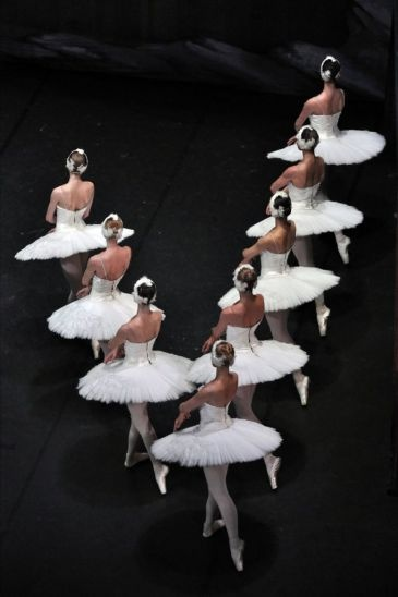 """Thinking of doing swan lake for my variation this year... Andare a teatro a vedere il balletto """" Il lago dei cigni"""""""