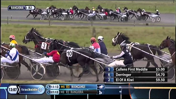 Rangiora 16 August 2015  Race 2