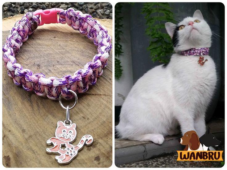 Paracord Cat Collar