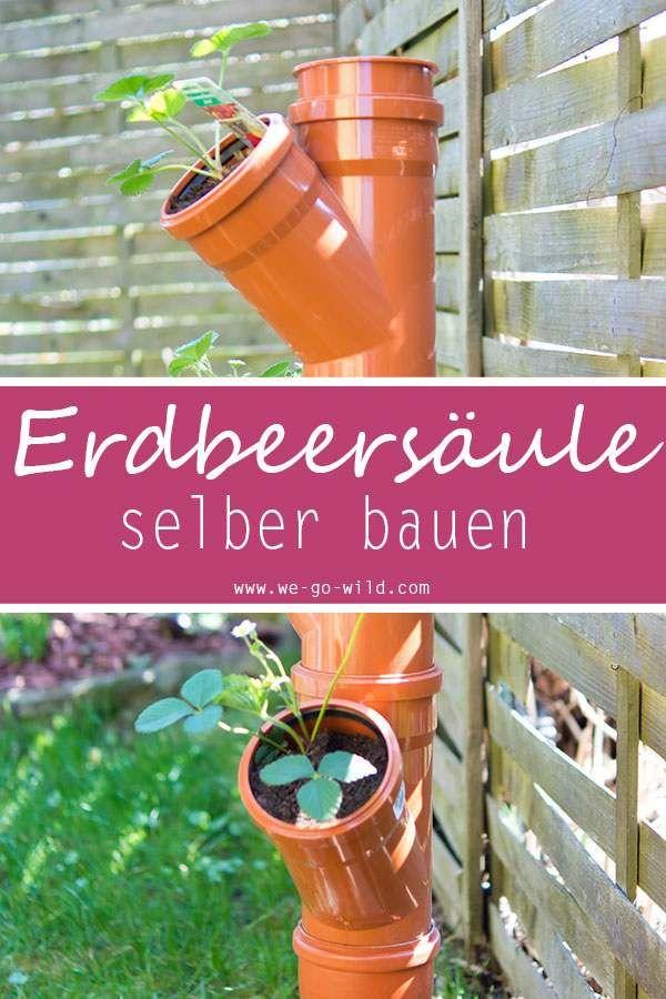 Erdbeerturm Selber Bauen In Nur 4 Schritten Zur Diy Erdbeersaule Erdbeerturm Erdbeeren Pflanzen Erdbeer Turm
