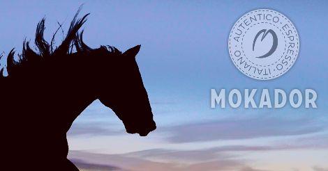 www.mokador.pl Zapowiada się piękny weekend, do pełni szczęścia brakuje tylko kawy MOKADOR :)