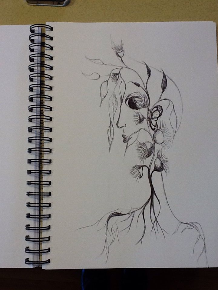 Flowering Gum. Pen on paper by Emel Jurd