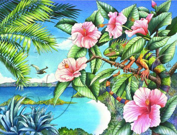 "Carolyn Steele tropical art print, iguana at Trunk Bay, St. john: ""Day of the Iguana"""