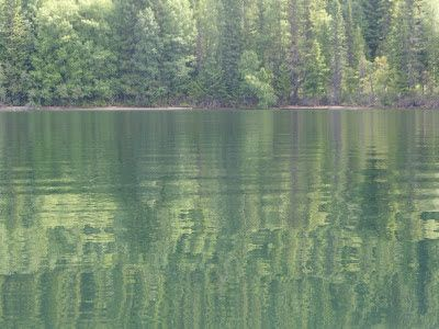 The Past is Present: Quesnel Lake, British Columbia