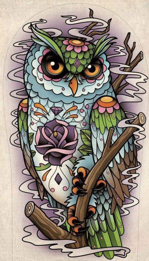 Zen owl