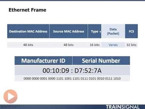 Ethernet Frame - YouTube ITN 5.1.1.5