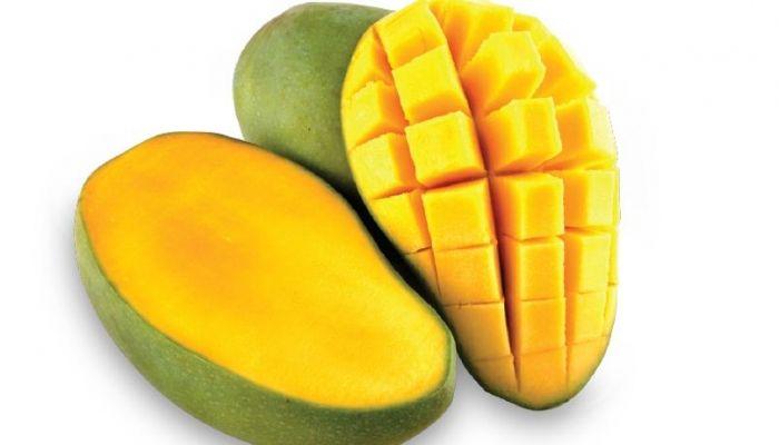 Berikut adalah berbagai macam kandungan nutrisi yang dimiliki oleh buah mangga