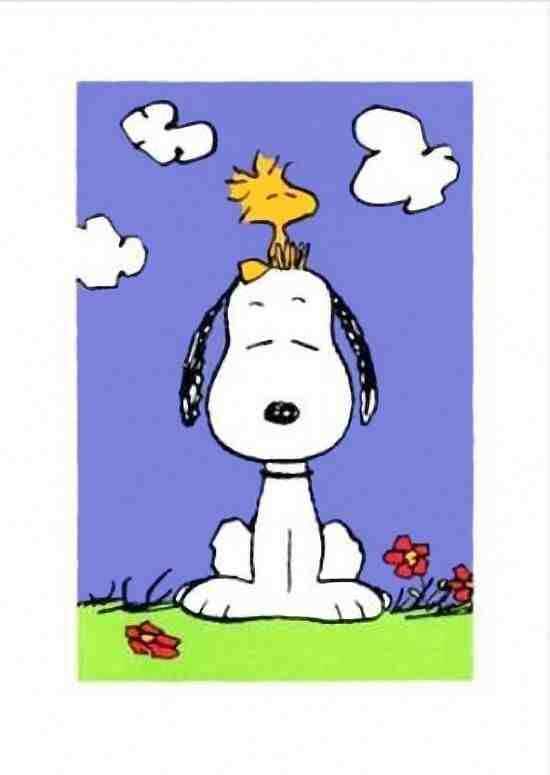 Snoopy/woodstock