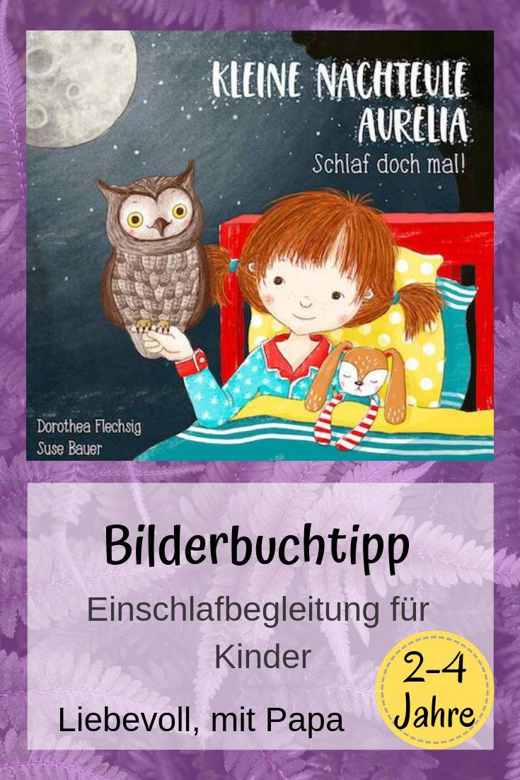 kleine nachteule aurelia  kinderbuchdetektive